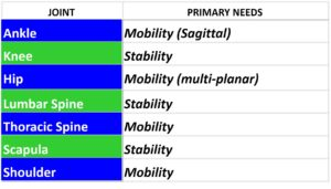 Mobility_and_Stability_of_Joints